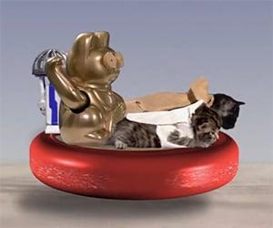 Paw Wars: A Kitty Parody of Star Wars Mos Eisley