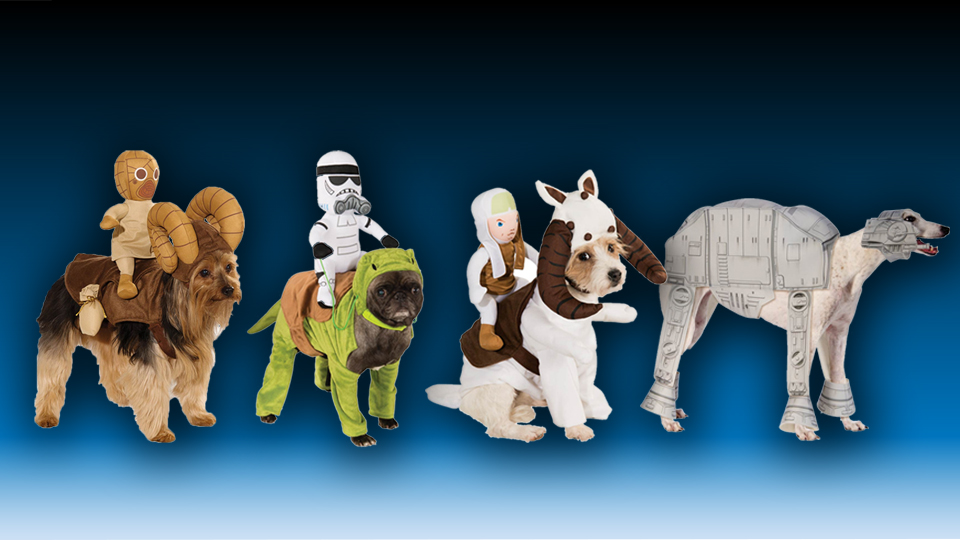 Star Wars Costumes for Dogs ... & Star Wars Costumes for Dogs - MightyMega