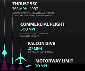 A Comparison of Man's High Speed Endeavors