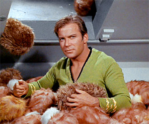 How Long Until Your House is Filled With Tribbles?