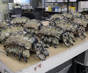 Pacific Rim: Making of the Kaiju Parasites