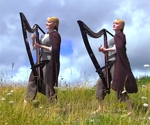 The Lord of the Rings Medley on Twin Harps