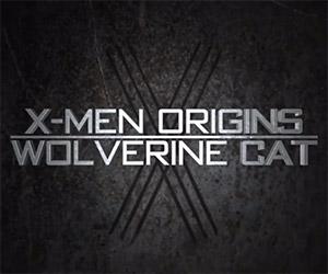 X-Men Origins: Wolverine Cat Attacks!