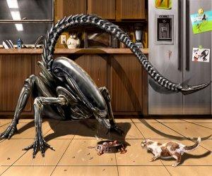 Alien vs. Pussycat, Finally