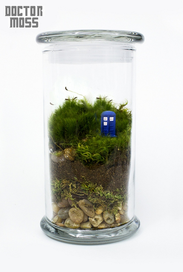 Sci-Fi Inspired Terrariums