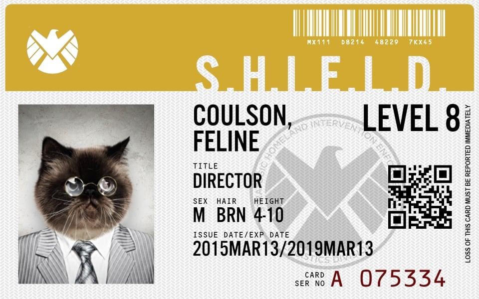 This App Makes Agents Of S.H.I.E.L.D. ID Badges