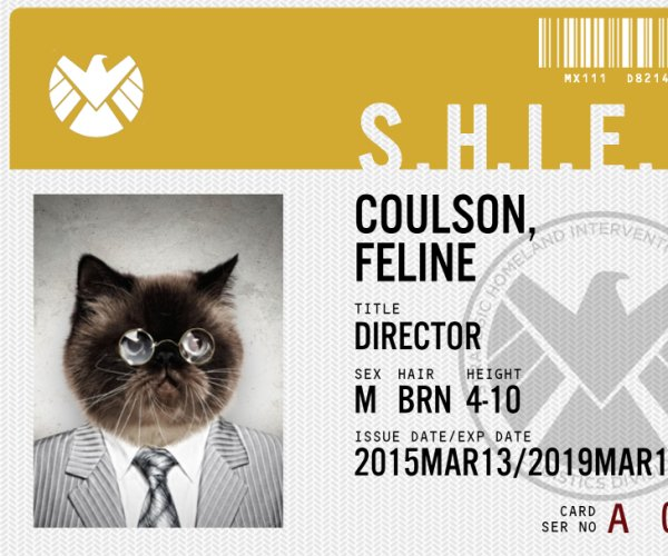 This App Makes Agents Of S.H.I.E.L.D. ID Badges