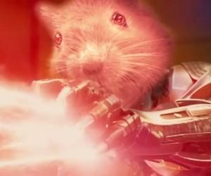 The AvenGerbils: Hamster of Thor