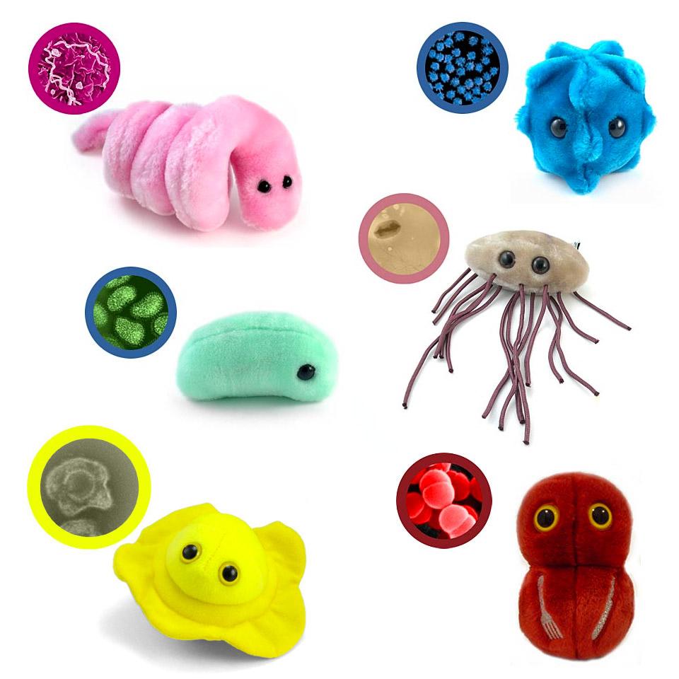Giant plush microbes make diseases soft and fun