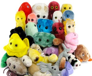 Giant Plush Microbes Make Diseases Soft and Fun
