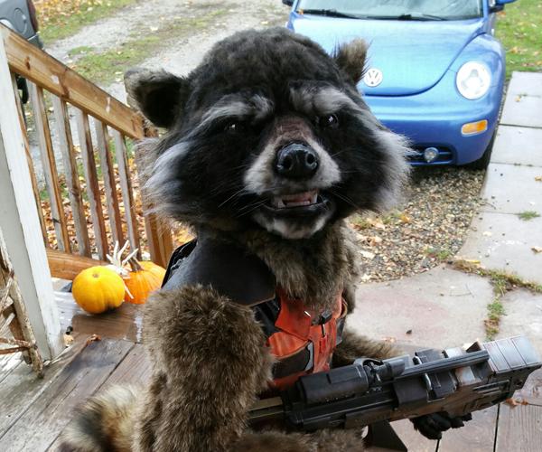 Awesome DIY Kid's Rocket Raccoon Costume