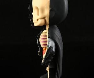 xxray_batman_superman_wonder_woman_figures_by_jason_freeny_4