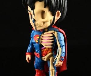 xxray_batman_superman_wonder_woman_figures_by_jason_freeny_8