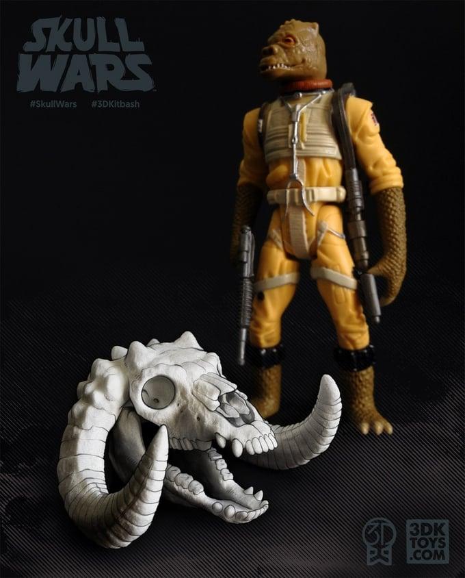 Star Wars Skull Models: Skull Wars