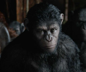 War for the Planet of the Apes Synopsis Revealed