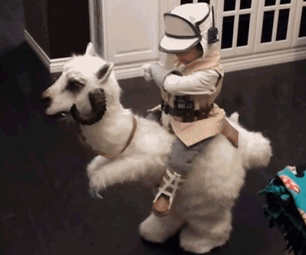 This Kid in a Tauntaun Costume Wins the Internet